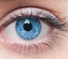WATERFORD SCIENTISTS FIND WAY TO BOOST GOOD VISION