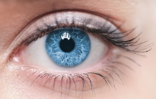 Eye Health and Function